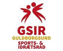 GSIR_logo-pos